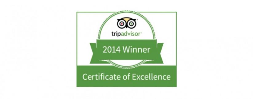 TripAdvisor Guest Reviews